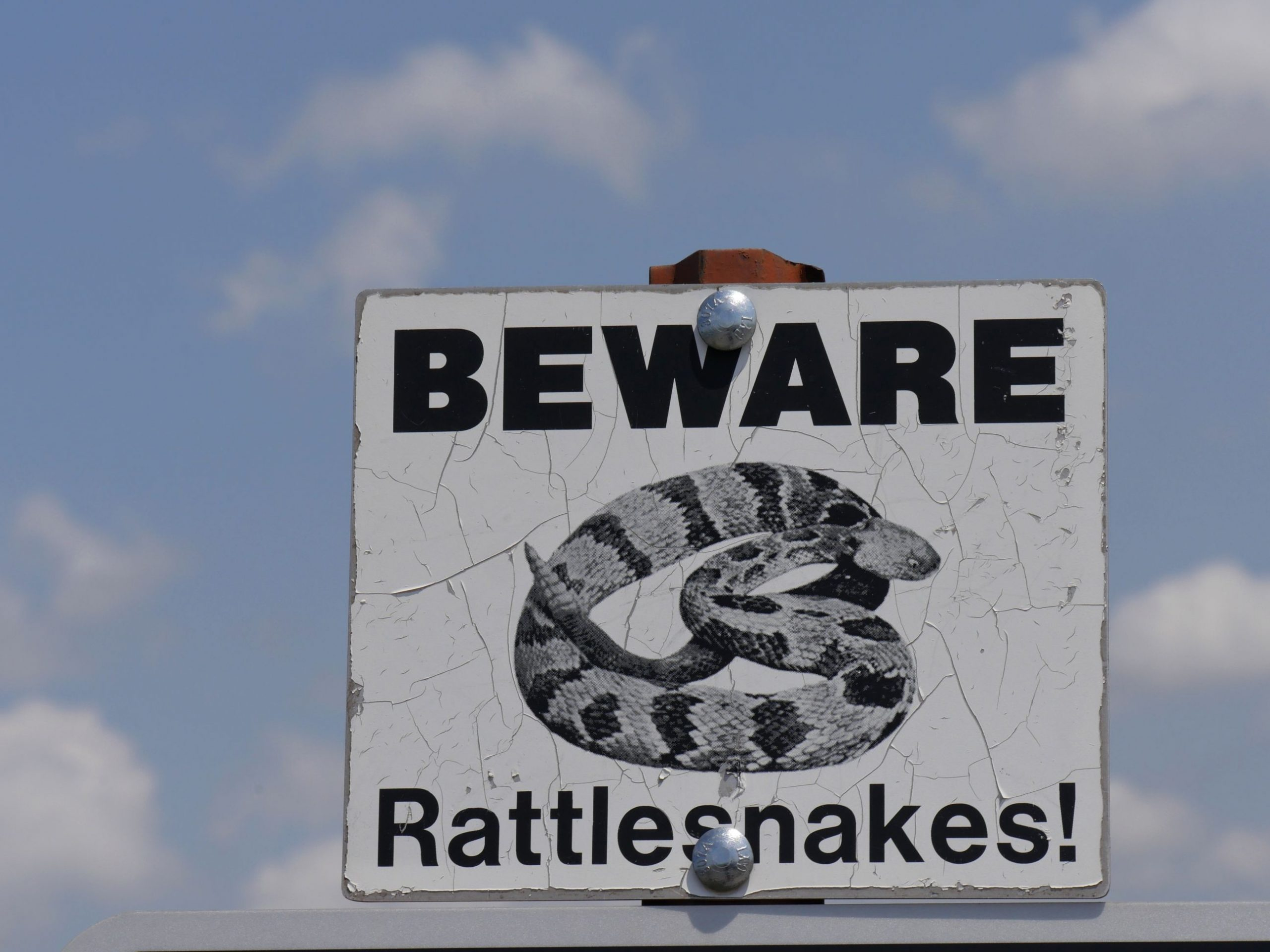 "A sign that says ""Beware of Rattlesnakes!"""